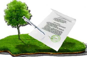 Переводим земельный или садовый участок в собственность